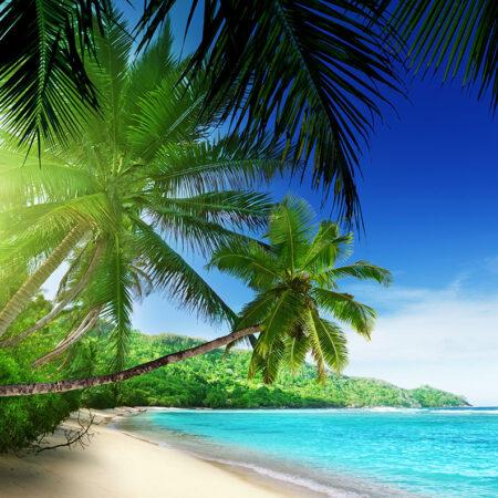 Fotomural Playa paradisíaca 736 VE