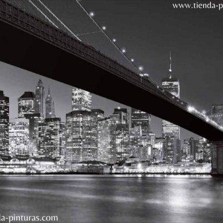 cw15409-8 New york